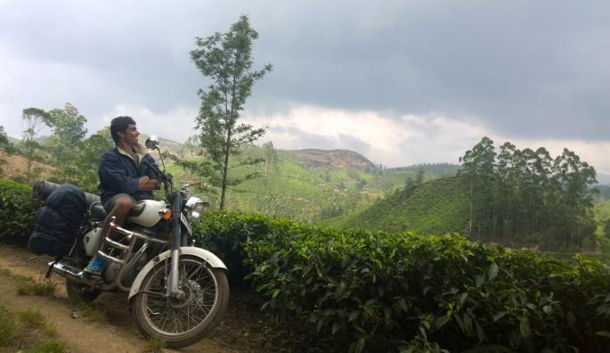 Laxmi tea estate , Munnar