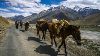 Towards kaza during spiti valley roadtrip