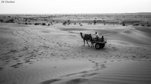 sand dunes safari jaiselmer