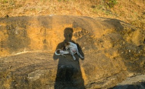 On trek to bhramgiri trimbakeshwar