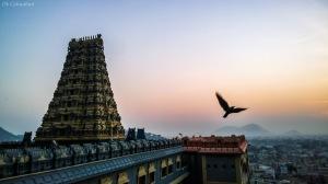 sunrise at vijaywada temple