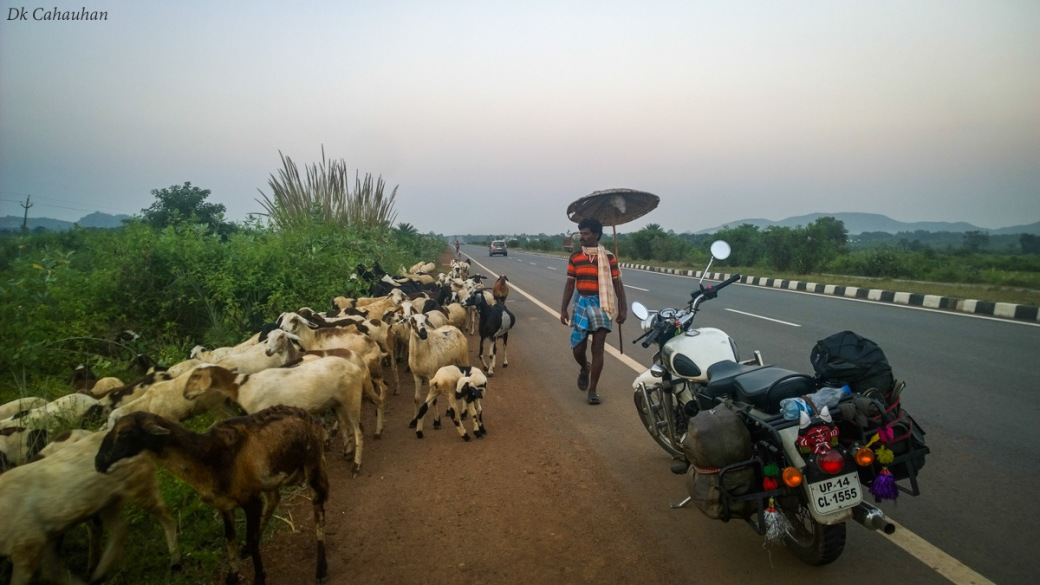Life on highway at odisha