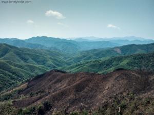 jhoom cultivation , moreh , manipur