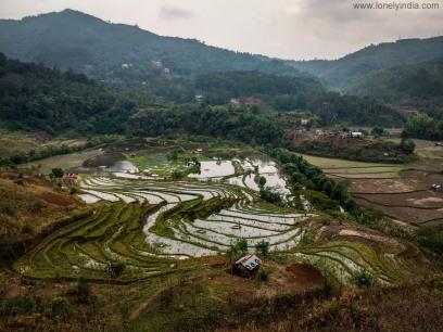terrace farming ukhrul manipur