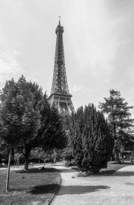 Eiffel Tower at paris france in afternoon